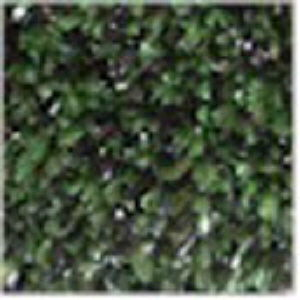 Where to find CARPET GREEN BLACK TURF sq.ft. in Huntington